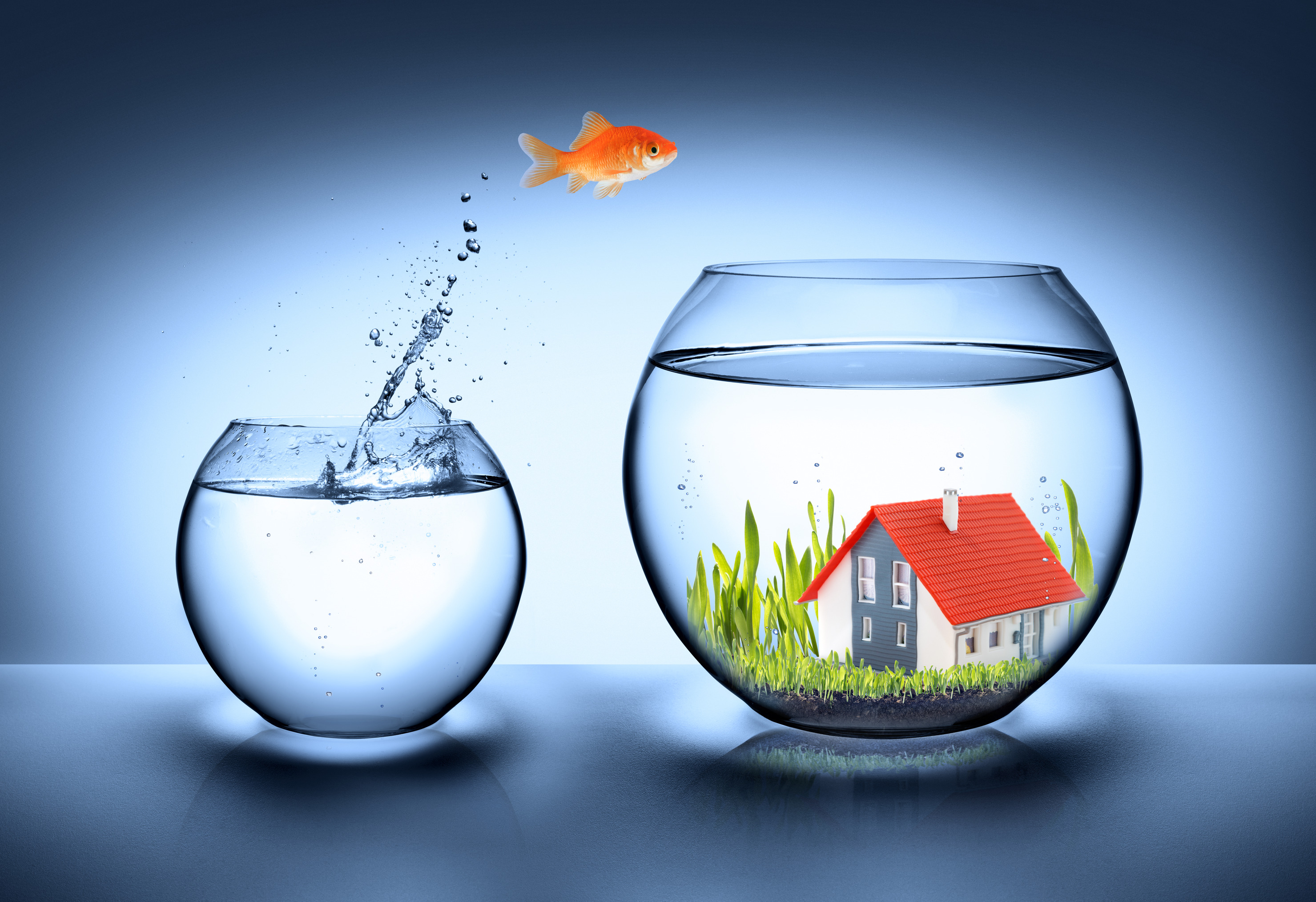 Contact Real Estate Marketing Leads